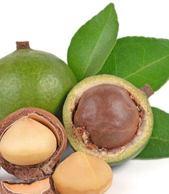 Huile de macadamia : hydratant nourrissant naturel