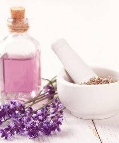 Les bienfaits de l'huile essentielle de lavande